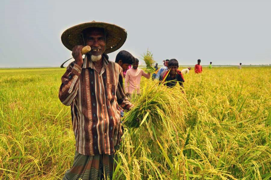 Nominal farm wage rate up by 6.59pc in FY17