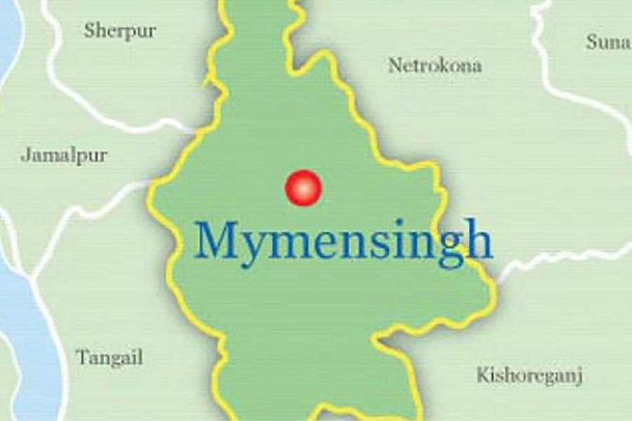 RAB arrests main accused over M'singh teen murder