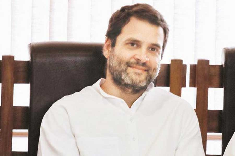 Rahul may take over as Congress chief: Sachin Pilot