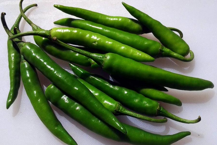 Green chilli rate shoots up in Tangail kitchen market