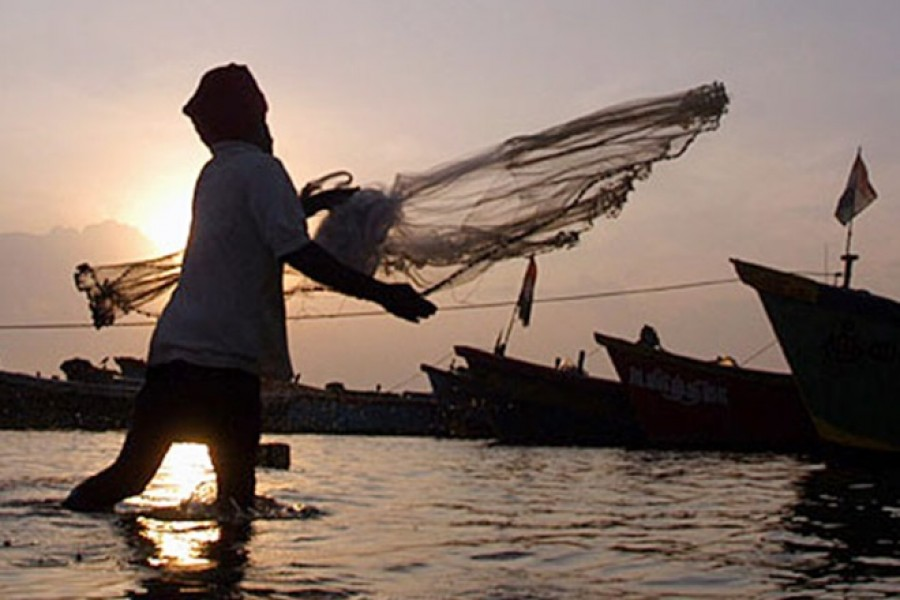 Sustaining the boom in the fisheries sector of the country