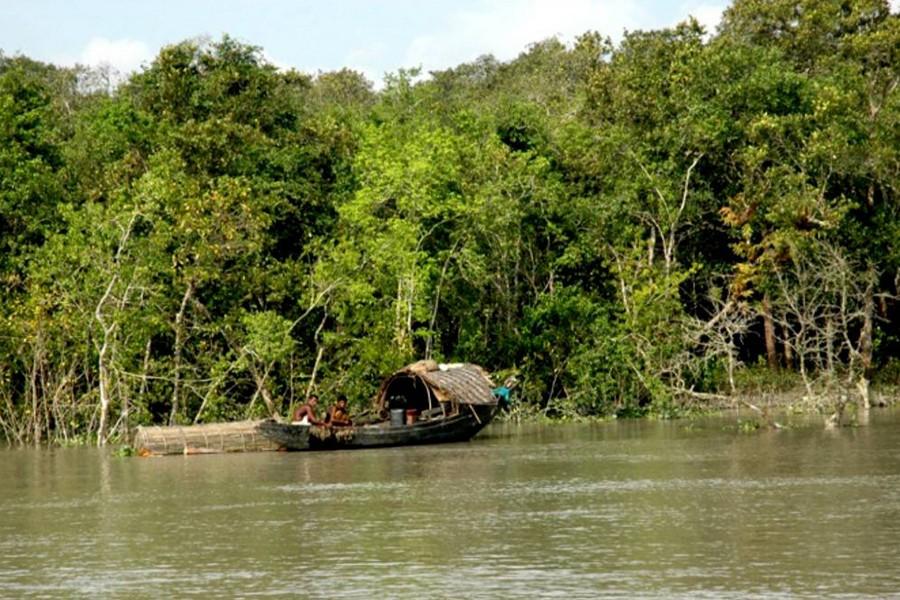 Fishermen decry Sundarbans fishing ban