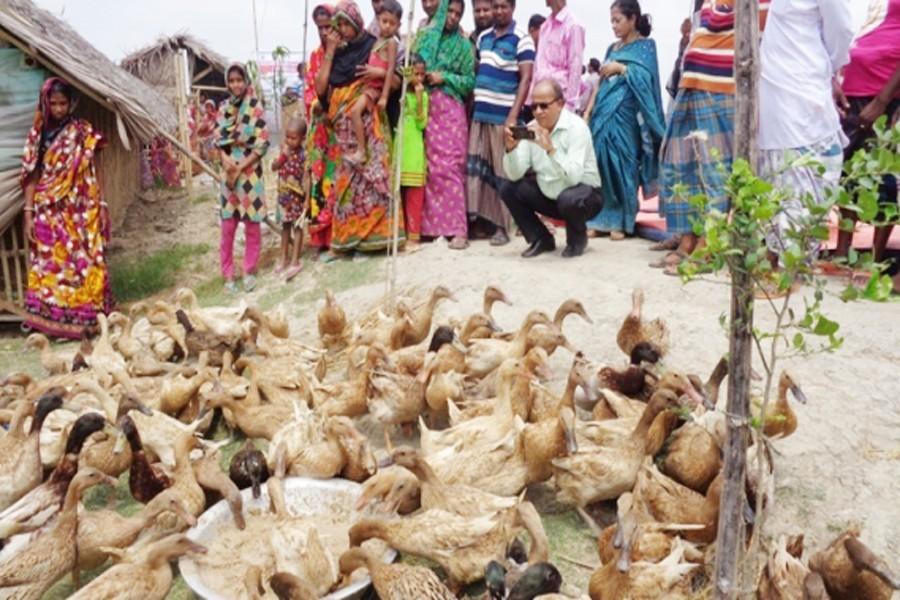 Improving rural people's living standard