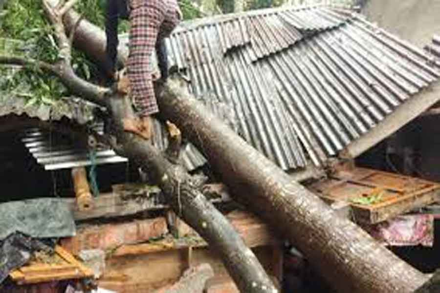 4,000-5,000 houses damaged  by cyclone 'Bulbul': Minister