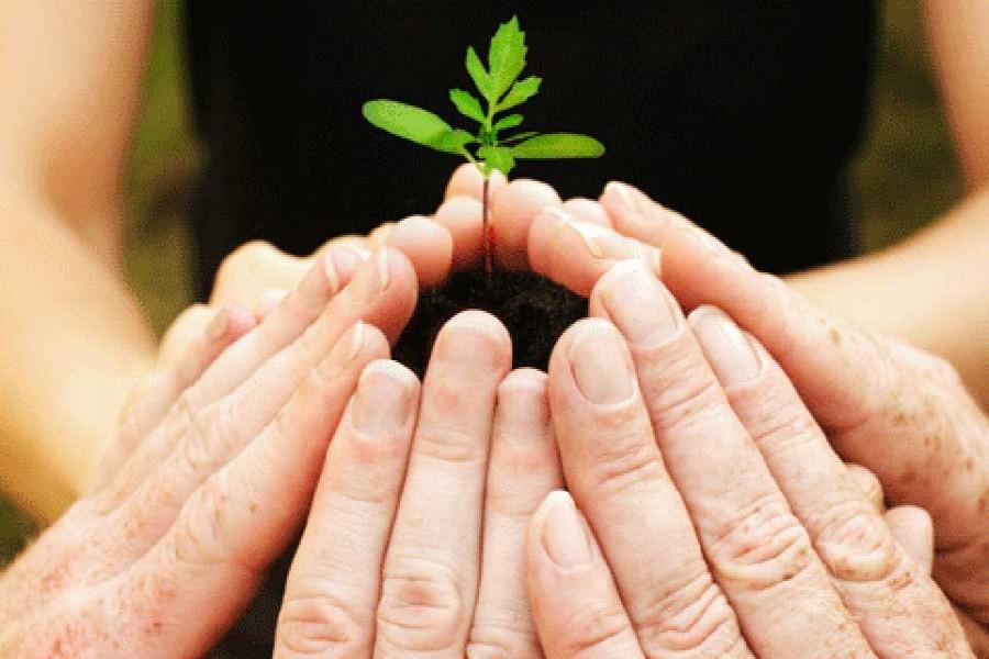 Sharing of rents: Challenges towards inclusive development