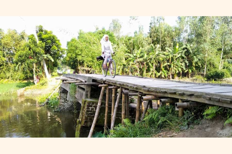 A girl crossing the Shoti river using the risky bamboo bridge by bicycle at Mohishamuri Dharapar village in Kaliganj upazila of Lalmonirhat — UNB Photo