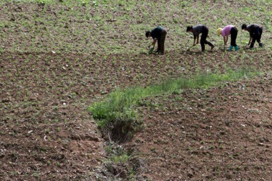 Food 'crisis' despite self-sufficiency, high growth!