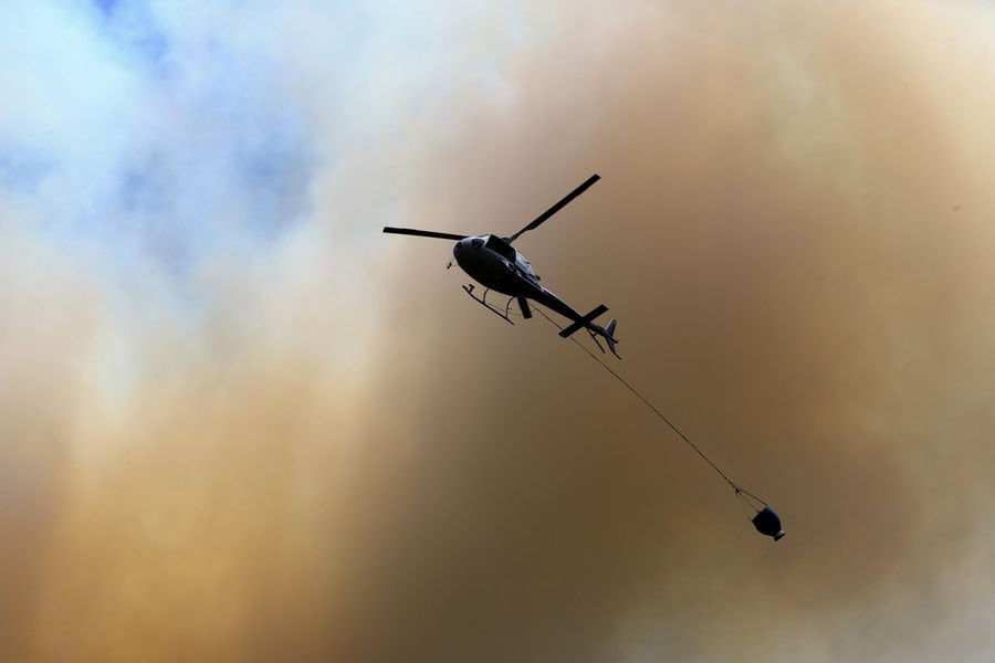 Firefighters contain New Zealand's large forest fire