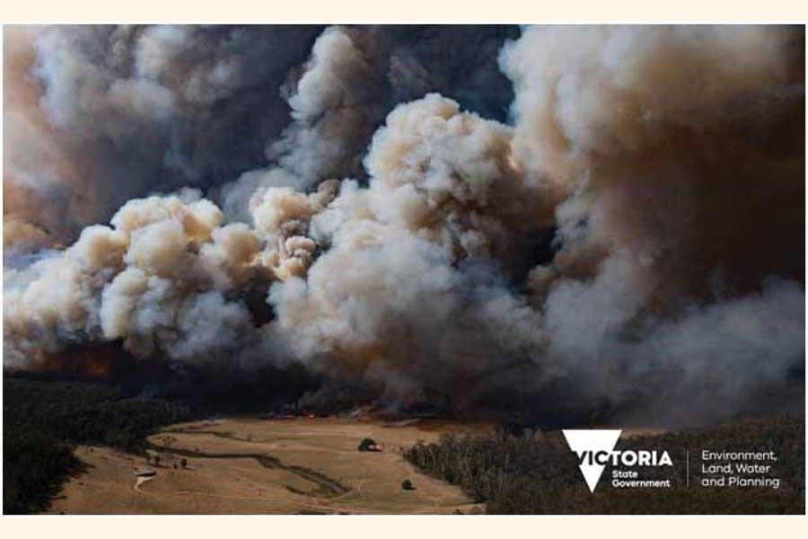 A fire in the East Gippsland region of Victoria, Australia on December 30, 2019.       —Photo by Ned Dawson for Victoria State Government.