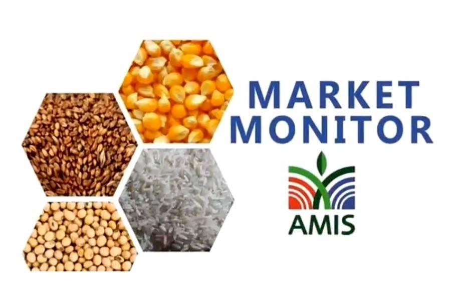 Streamlining food market: Introducing AMIS