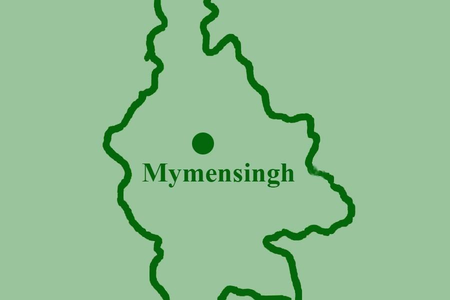 Truck hits auto-rickshaw in Mymensingh, killing two